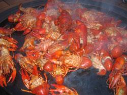 crayfish a la plancha