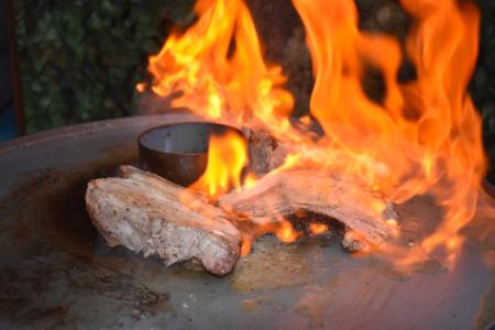 Fire Plate Kamado Cooking