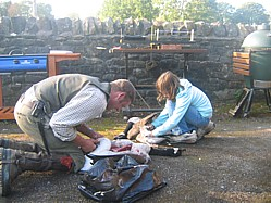 Image Of Simon And Lucy Removing The Breasts From Duck And Geese