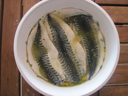 Here's the mackerel in the marinade