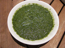 Spicy Mint Coriander Chutney
