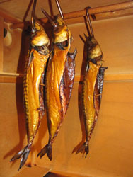 Warm smoking mackerel in your homemade smoker