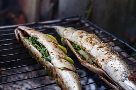 Easy Barbecue Fish Recipes