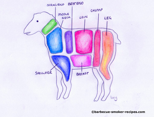 Butchers anatomy of lamb, UK terminology