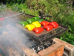 Peppers Roasting For A Barbecue Salad