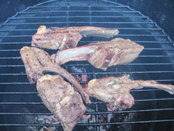 Grilled Lamb Chops Recipe On The Grill