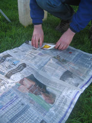 the trout is wrapped in newspaper
