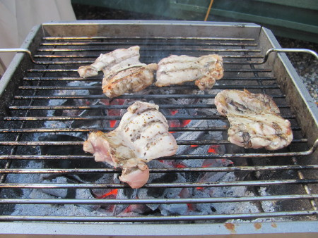 Grilling chicken on the Thuros T2 pedestal grill